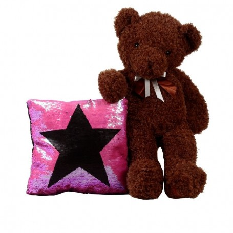 Star Surprise Teddy Bear