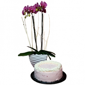 Orchid and Pinion Cake