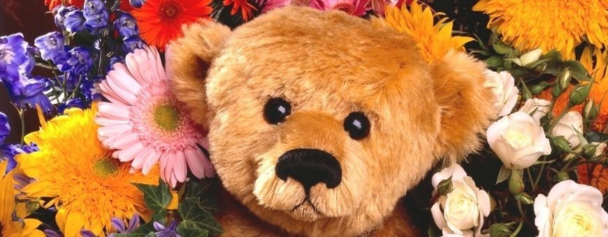 Send Stuffed Animals, Bears and more to Puebla, local delivery for today