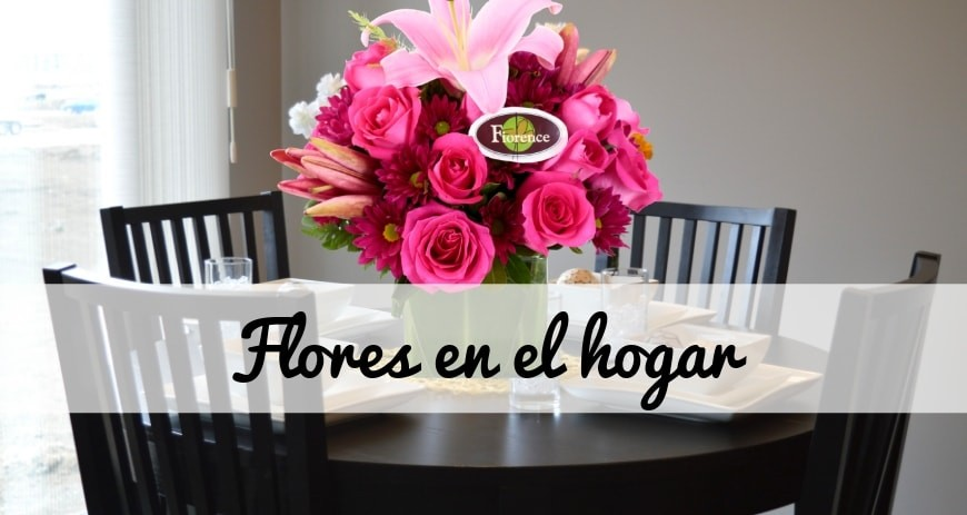 TOP 7 IDEAS OF BEAUTIFUL FLOWERS TO DECORATE YOUR HOME