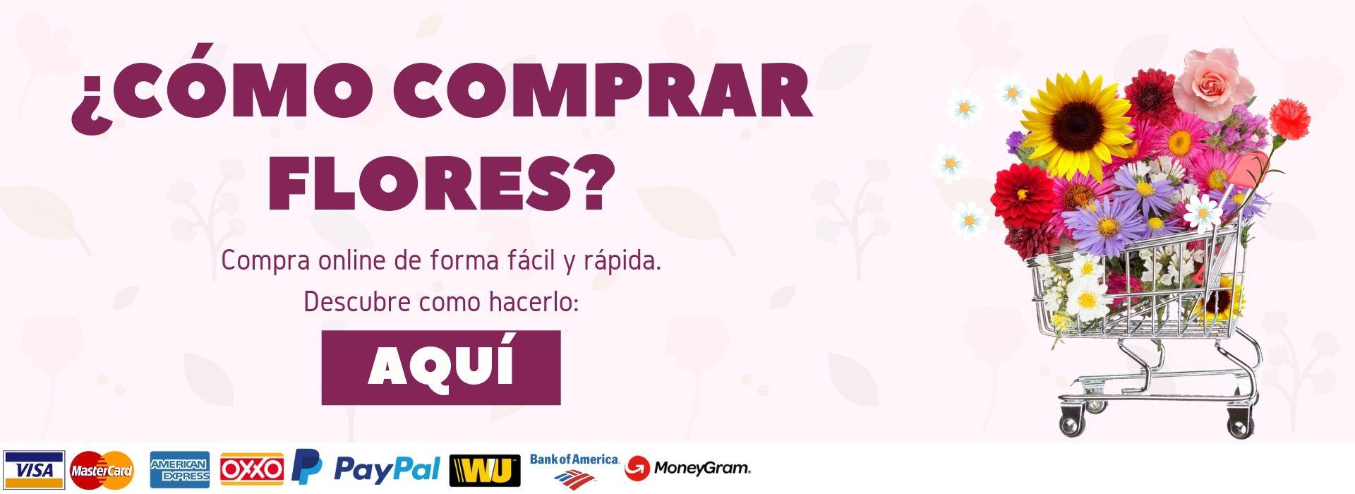 ¿Cómo comprar flores en Puebla?