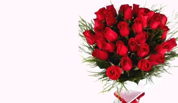 Buy 36 roses